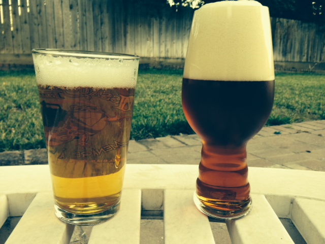 Is The Dogfish Head + Sierra Nevada IPA Glass Worth Your Money?