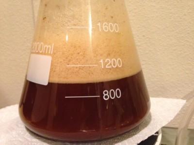 yeast starter overflow