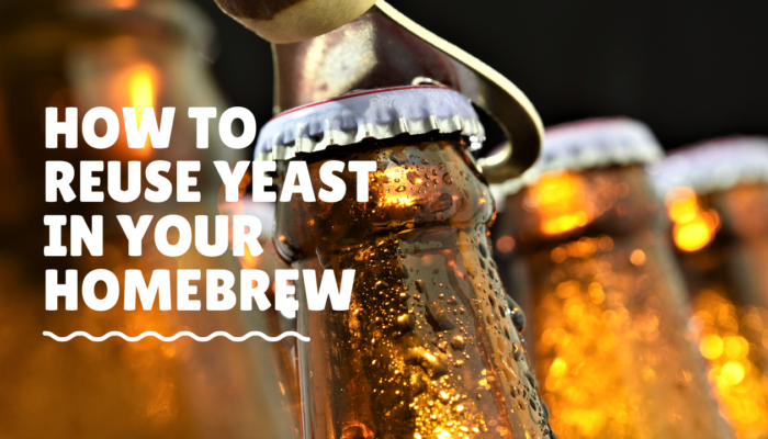 How To Reuse Yeast In Your Homebrew