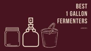 Best 1 Gallon Fermenter featured image