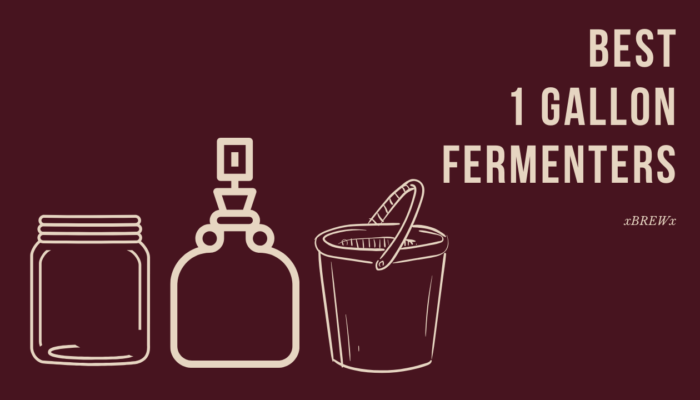 Best 1 Gallon Fermenter featured image
