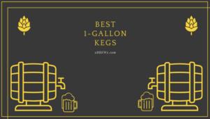 Best 1-Gallon Kegs Featured
