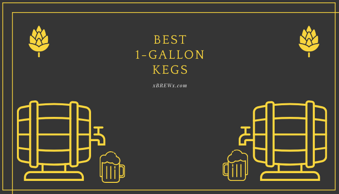 Best 1-Gallon Kegs Featured