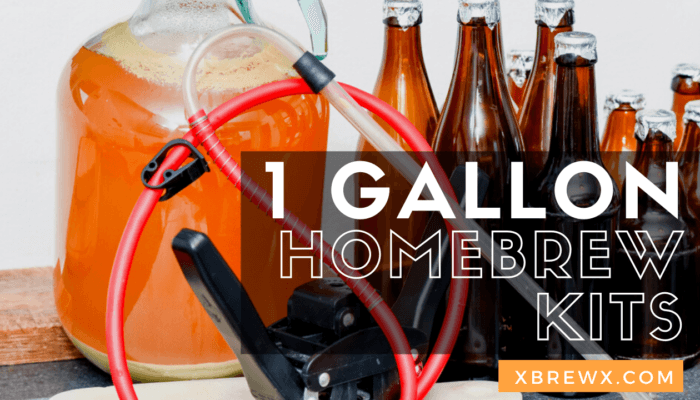 1 Gallon homebrew kits featured image