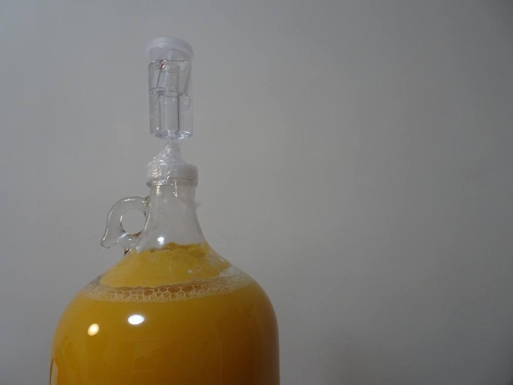 bright orange beer fermenting in glass gallon jug
