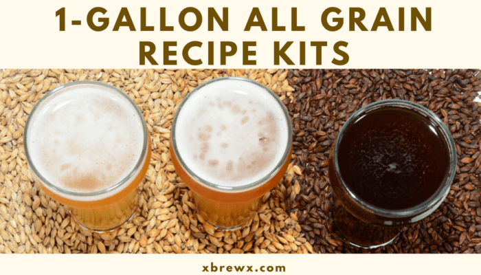 best 1 gallon all grain recipe kits featured image